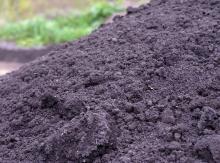 Dirt and Topsoil